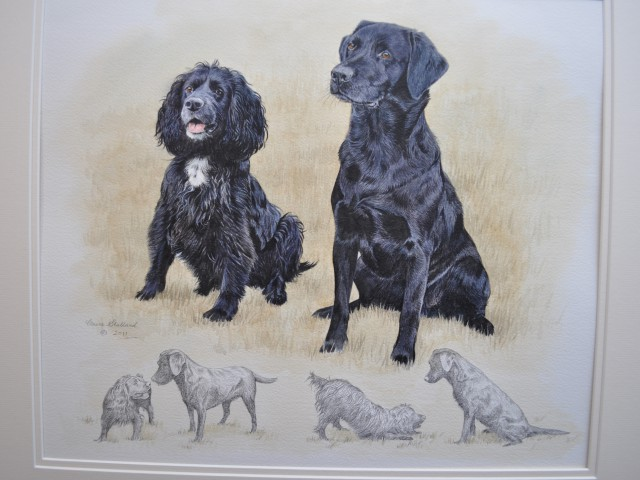 Lets Work Together Labrador and Spaniel Pet Portrait