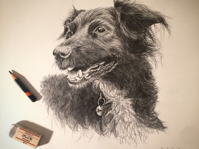 Millie, a Pencil Sketch by Roanna  Stallard. If a lesser cost option is what you are looking for please just ask!