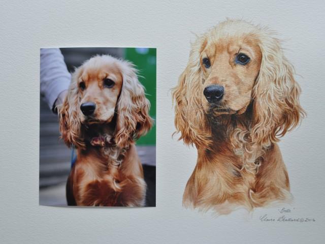 """Cocker Spaniel Water Colour Pet Portrait """"Belle"""""""
