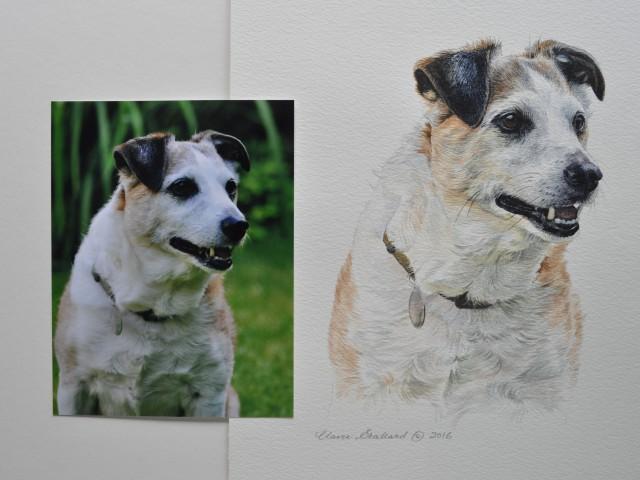 """Jack Russell Terrier Water Colour Pet Portrait """"Patch"""""""