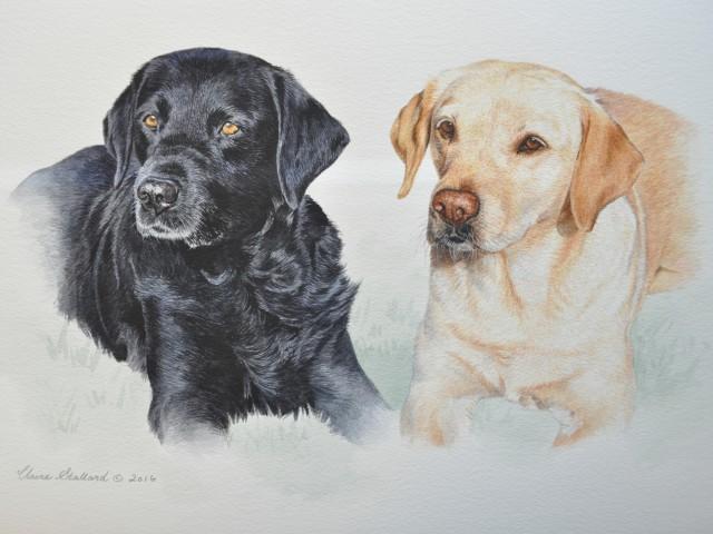 Black and Golden Labrador water colour Pet Portrait