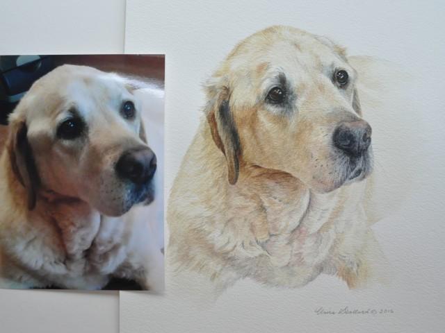 """Yellow Labrador Water Colour Pet Portrait """"Danny"""""""